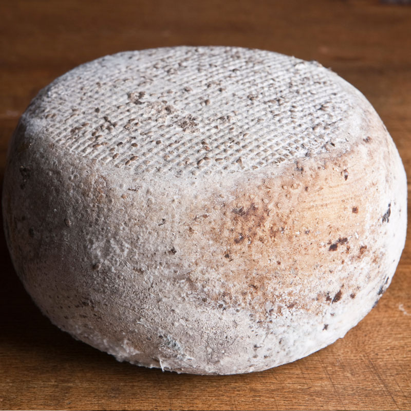 Pecorino alle more selvatiche e mirtillo